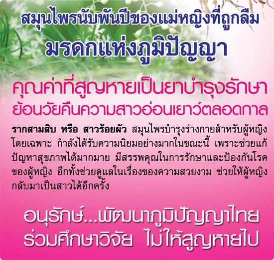 รากสามสิบ สมุนไพรไทย